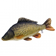 Common Carp Cushion