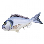 Sea Bream Fish Cushion