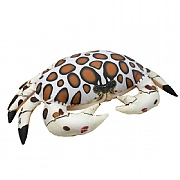 Calico Crab Cushion