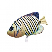 Regal Angelfish Cushion, 14in.