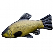 Tench Fish Cushion