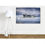 Sea Vixen 'Foxy Lady'