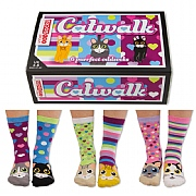 Ladies' 'Catwalk' Boxed Socks